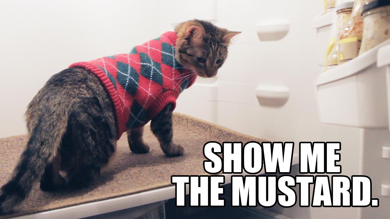 ShowMeMustard