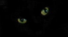 The Magic Eyes of a Black Cat