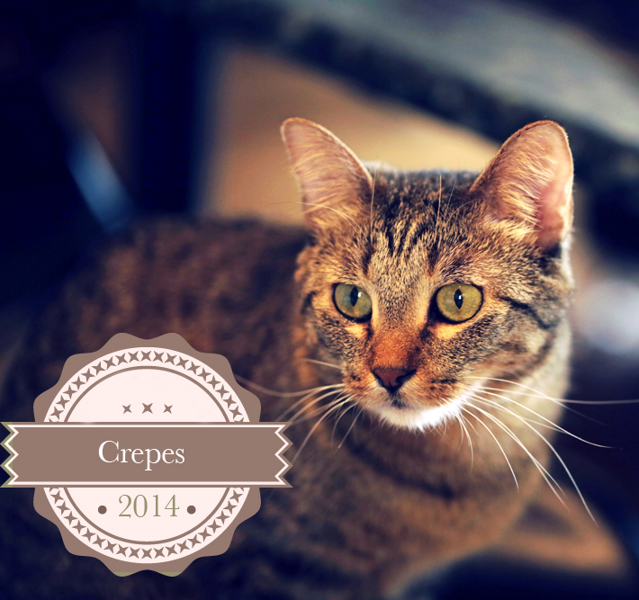 Crepesblogpaws2014