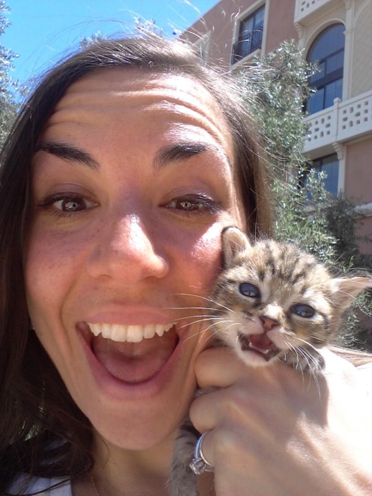 Be a kitten super hero!