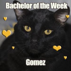 Gomez!