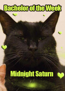 Midnight Saturn: He's Intergalactic