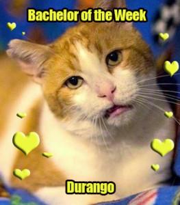 Durango: TV Fan