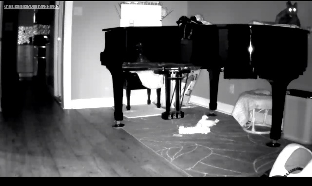 Find out who's footprints are all over the piano.
